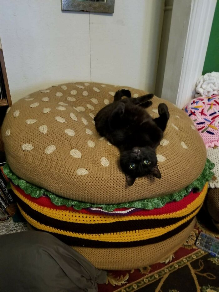 I Crocheted A Cheeseburger And My Cat Loves It So Much