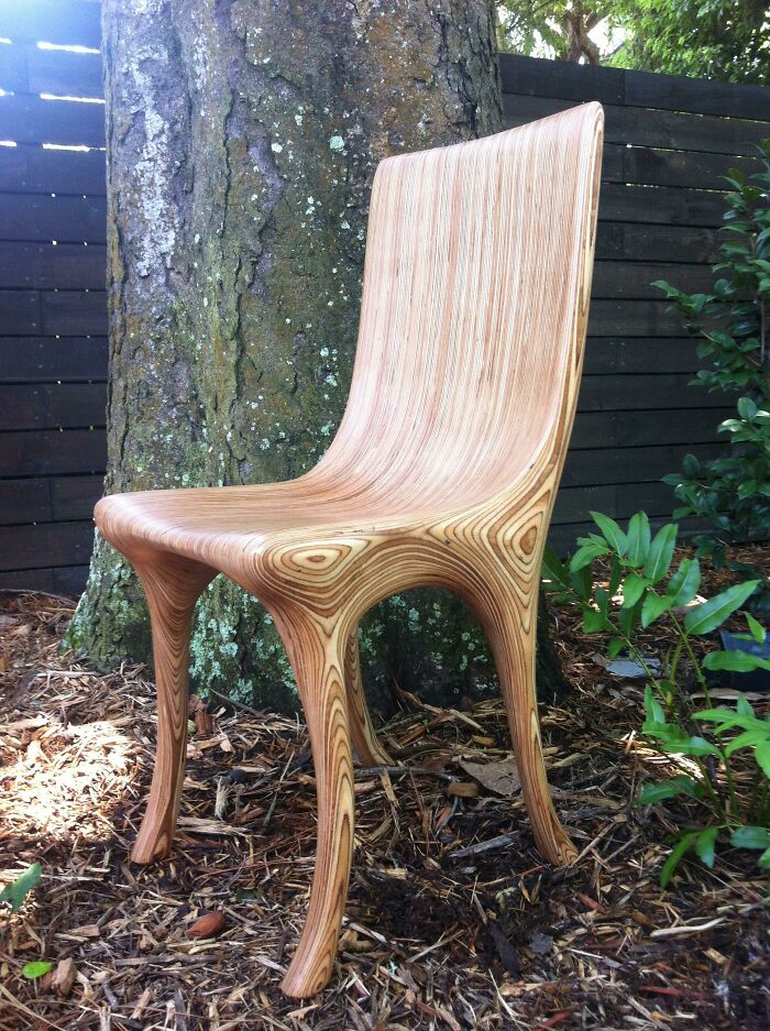 This Dining Chair
