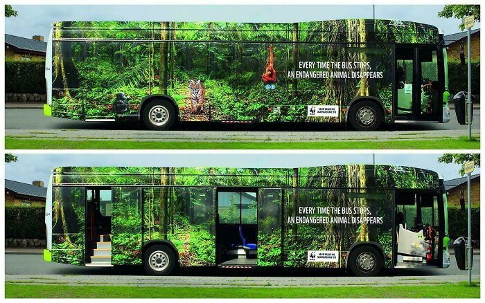Every Time This Bus Stops, An Endangered Animal Disappears