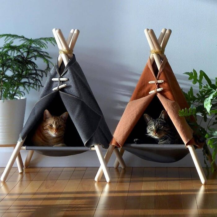 Adventure Tent Cat Bed By Tinkertradingco