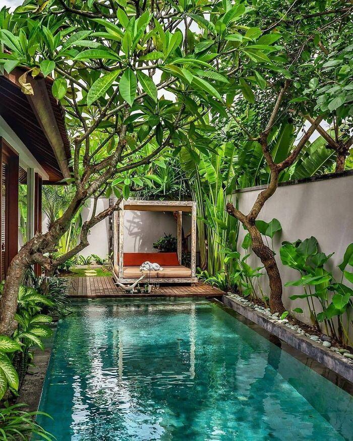 Tropical Swimming Pool / Bali
