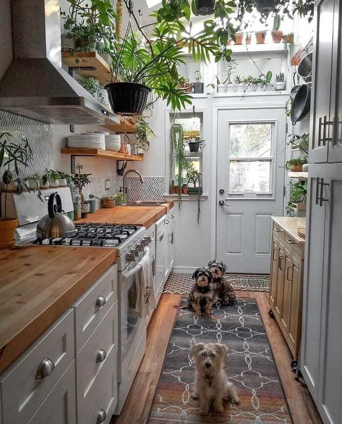 In Love With This Lovely Kitchen!