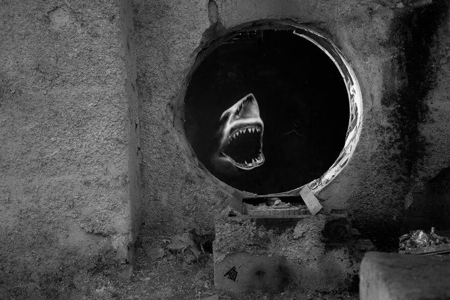 Shark, By JPS