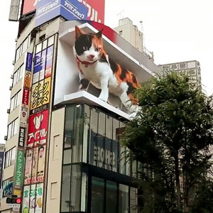 Giant Hyper-Realistic 3D Cat Billboard Appears In Tokyo, Mesmerizes The Passersby
