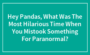 Hey Pandas, What Was The Most Hilarious Time When You Mistook Something For Paranormal?