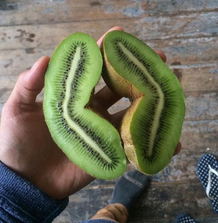 Comida completa de kiwi
