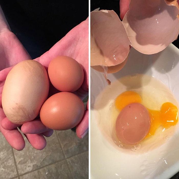 La gallina de mi amigo puso un huevo enorme con un huevo de tamaño normal dentro