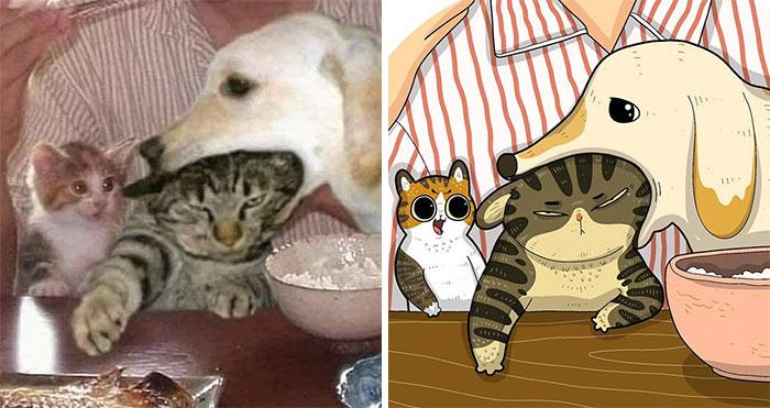 40 de las fotos de gatos más divertidas de Internet son ilustradas por Tactooncat (nuevas fotos)