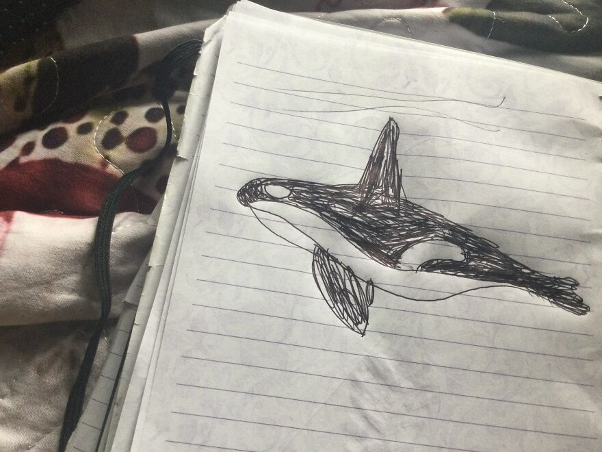 Oliver Orca