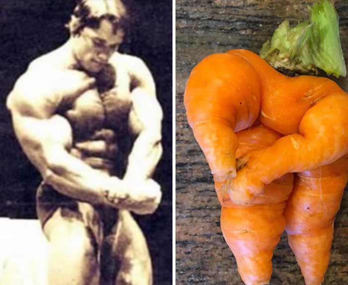 My Sister Grew A Carrot That Looks Like Arnold