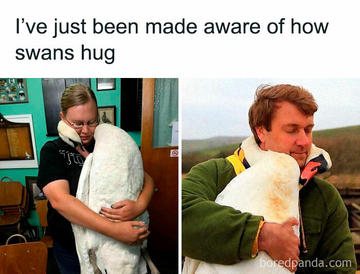 People-Share-Super-Wholesome-Pics