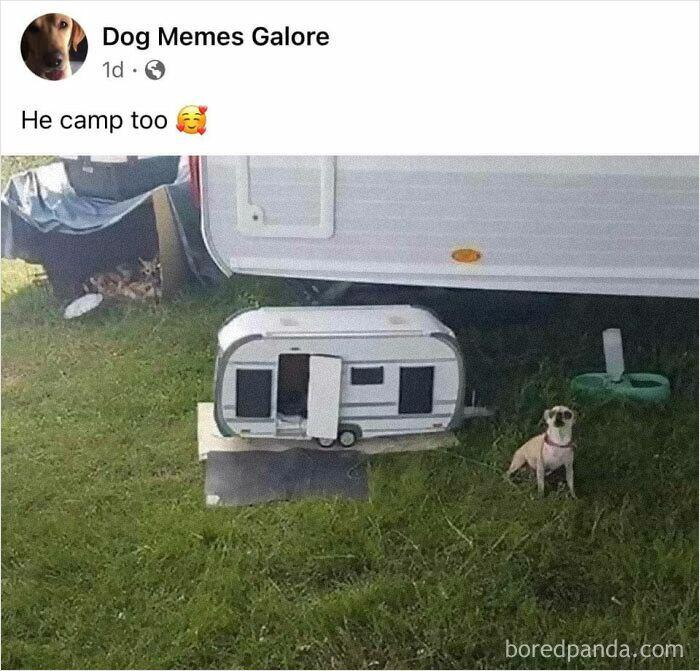 He Camp Too