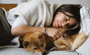 Here's Why You Should let Your Dog Sleep In Your Bed