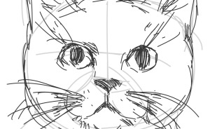 Hey Pandas, Draw A Cat And Share The Result