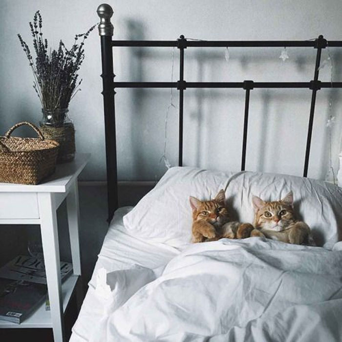 Cute....Tell Us A Bedtime Story! Please