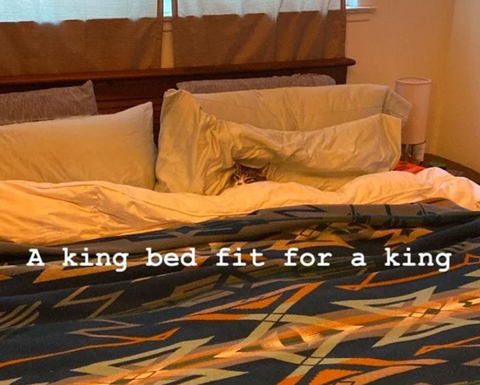 A King Bed Fit For A King