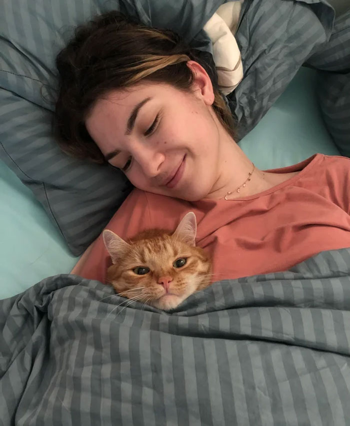 Catto Is Ready For Bed. Night Night