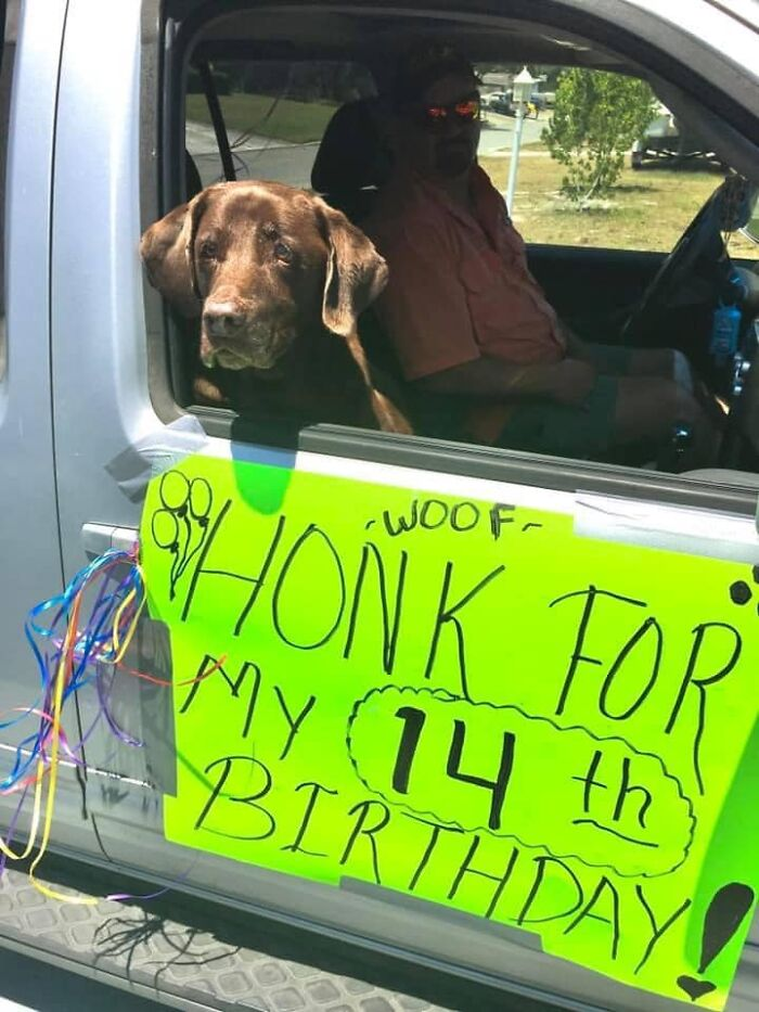 """My """"Brother"""" Turned 14 Years Old Today! He Enjoyed A Long Car Ride, Swimming In The Ocean And Some Cheeseburgers! Everyone Wish Dakota A Happy Birthday"""
