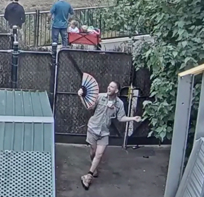 Absolute Legend On Melbourne Zoo Livestream