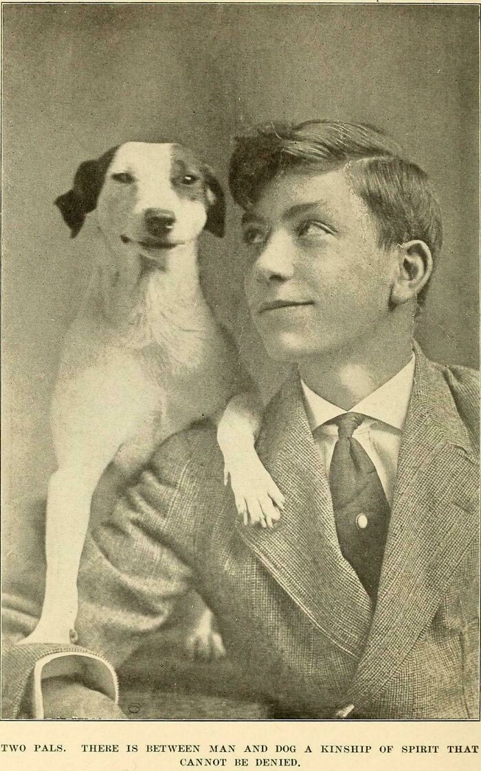 Two Pals (1920)