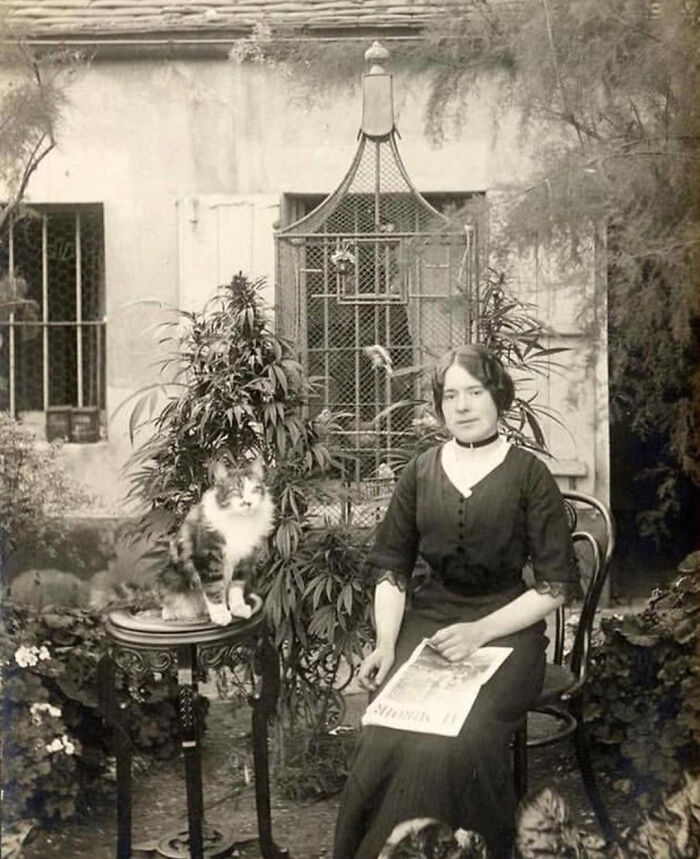 A Parisian Woman With Her Cat In Her Cannabis Garden, 1910