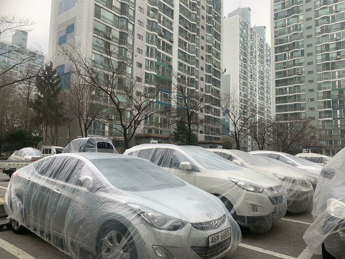 Apartment Complex In Korea Being Painted, So The Painters Shrouded All The Cars In The Parking Lot To Protect From Splatter