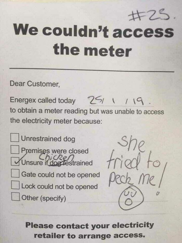 Energex Couldn't Check My Meter Due To My Chicken