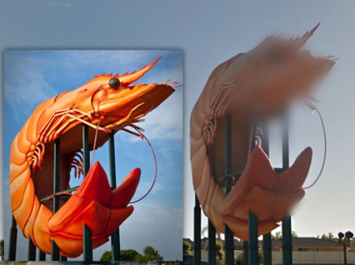 Google Street View Has Blurred The Face Of Ballina's Big Prawn. Privacy First!
