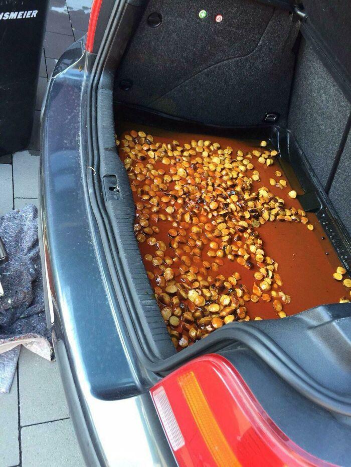 Cuando llevas currywurst en el maletero