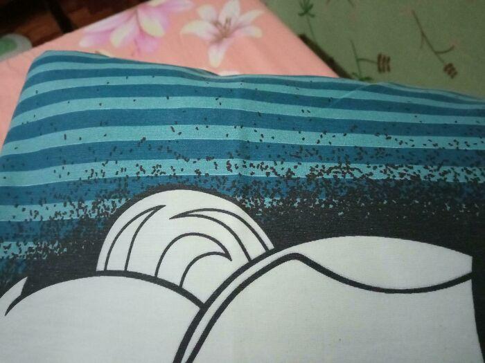 El diseño de esta funda de almohada hace que parezca que hay bichos arrastrándose por ella