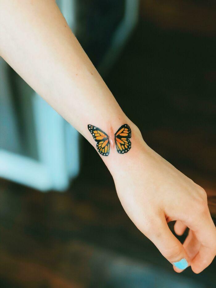 Mariposa de cicatriz