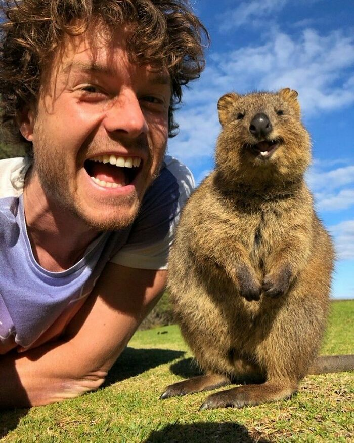 We Had Joy We Had Fun, We Had Quokkas In The Sun. Tag A Friend Who Has Never Seen A Smiling Bear