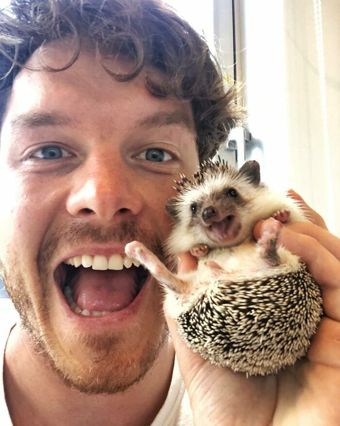 Relationships Are Like Holding A Hedgehog. The Roller Coaster Of Love