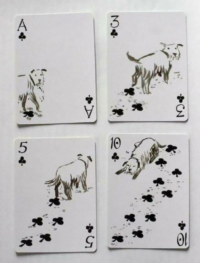 These Playing Cards