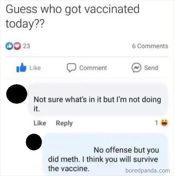 I Think You Will Survive The Vaccine