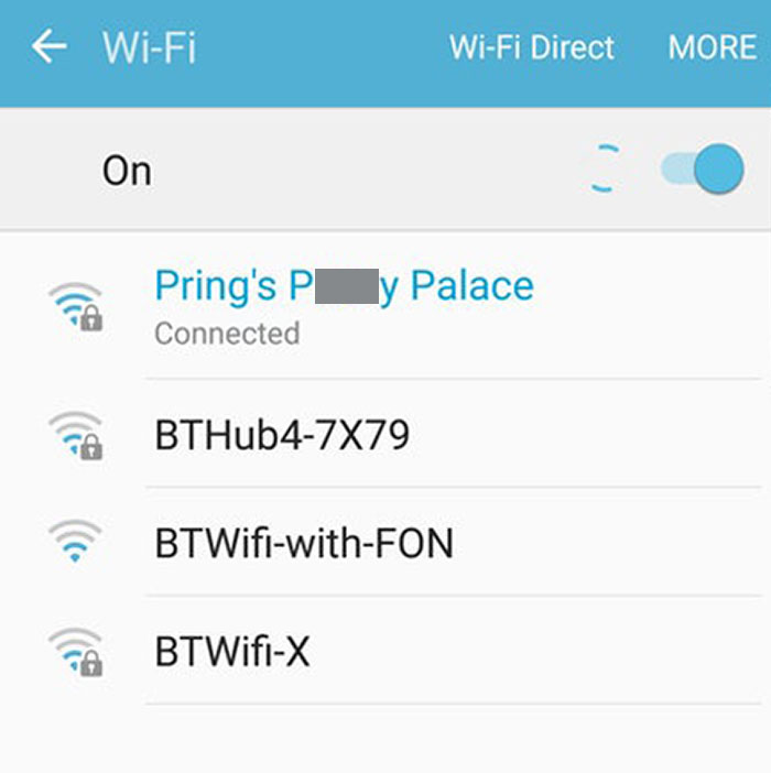 So My Cat-Crazy Mother Figured Out How To Change The WiFi Name Today, Now My Neighbours Must Think We're Running A Brothel. Great
