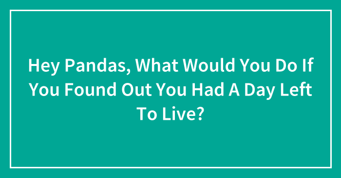 Hey Pandas, What Would You Do If You Found Out You Had A Day Left To Live? (Closed)