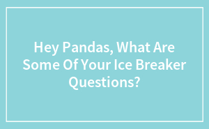 Hey Pandas, What Are Some Of Your Ice Breaker Questions?