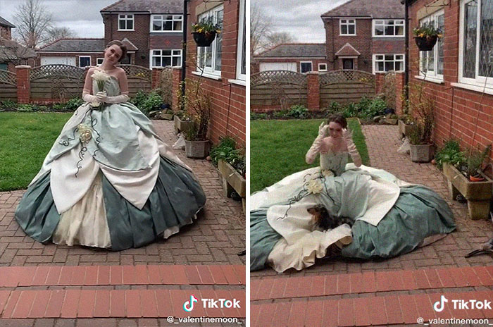 Princess Tiana's Ballgown