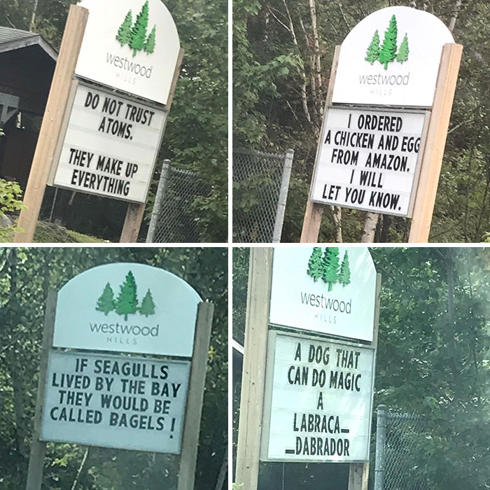 My Dad Was Responsible For Our Neighbourhood Sign This Week, A Series