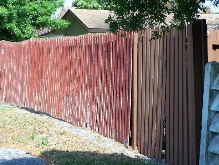 Petty-Annoying-Neighbors-Revenge