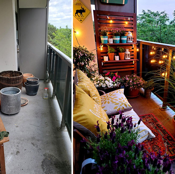 Never Had A Backyard In My Life. Took 3 Months Of Covid Quarantine To Pull This Together. Finally Have My Very Own Balcony Oasis In Toronto