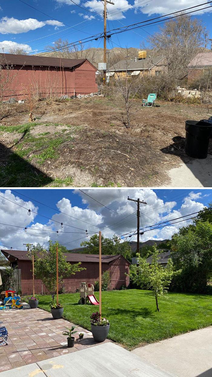 My Covid Project. Revamped Backyard