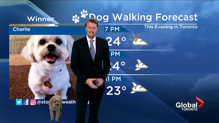 This Dog Just Interrupted The Weather Forecast By Asking His Owner For A Snack
