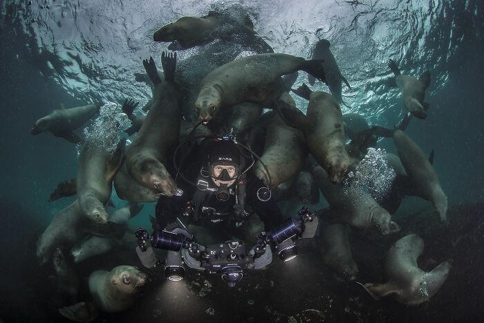Fotógrafo de Aventuras Oceánicas: Steve Woods