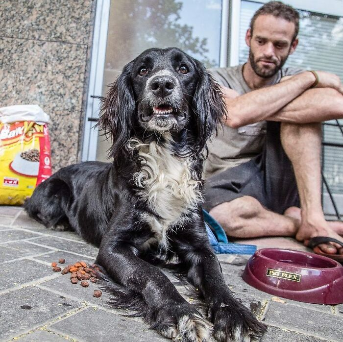 Account On Instagram Shows The Friendship Between Brazilian Homeless People And Their Dogs (183 Pics)