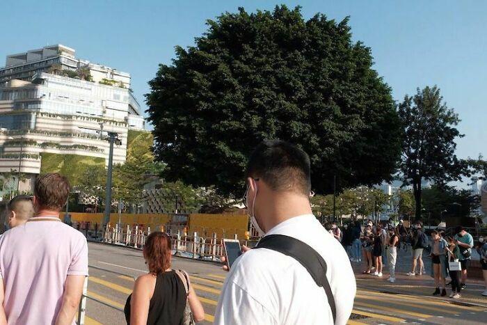 Peinado afro enorme