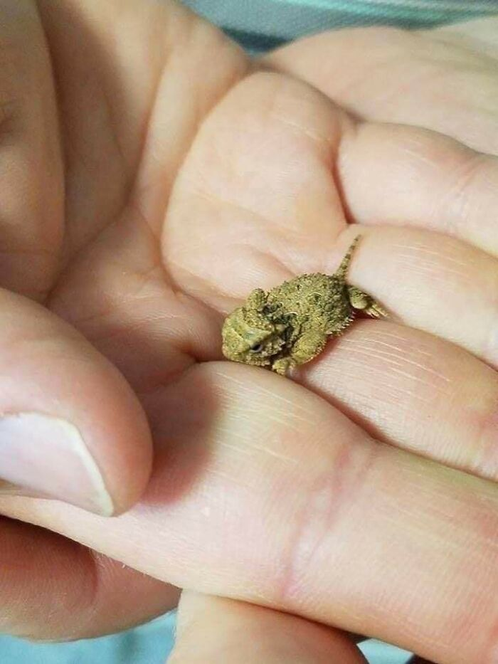 Un poco de marihuana