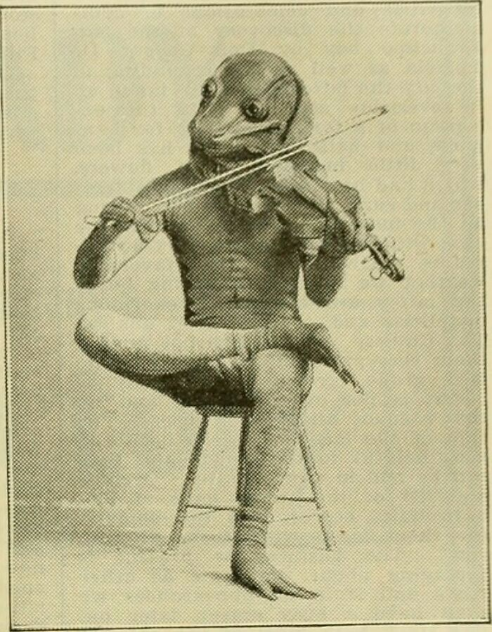 """Found This Weird Photo Online. The Title Said That It's From """"Page 896 Of The American Florist, A Weekly Journal For The Trade (1885)"""". Please Make Special Note Of His Feet"""