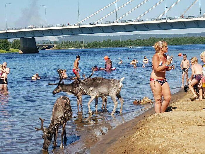 Ola de calor en Rovaniemi, Finlandia